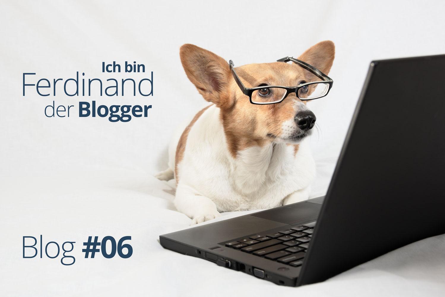 Ferdinand der Blogger – Ein Hund packt aus #06 – Ein Witz