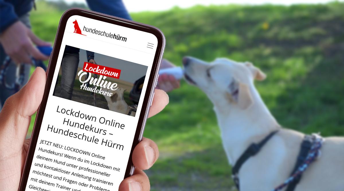Lockdown Online Hundekurs – Hundeschule Hürm